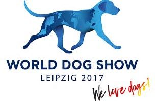 WDS Leipzig 2017